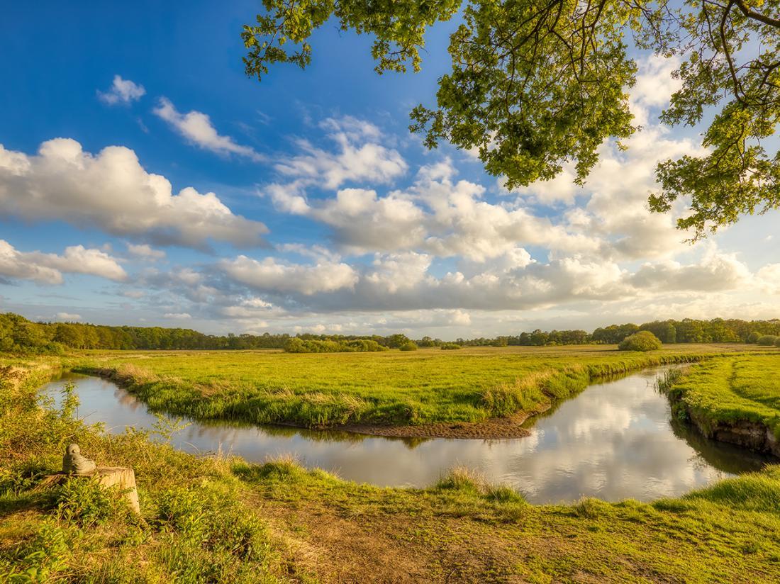 Natuur Omgeving Drenthe Groningen