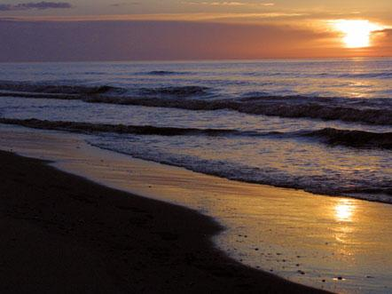 Sandton Paal 8 Terschelling Kust Zee