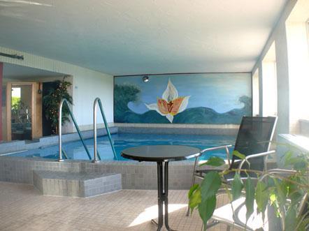 Resorthotel Park Hill Baden Württemberg Lossburg Duitsland zwembad