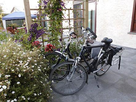Bed And Breakfast The Protea Zonnebeke Fietsen