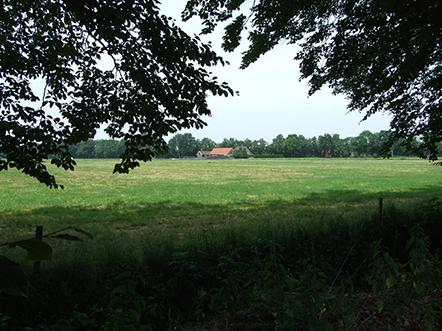 Landhotel de Greune Weide weiland