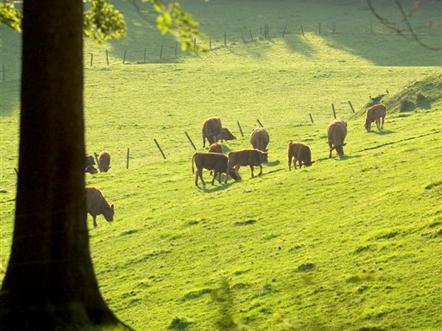 heuvellandschap limburg